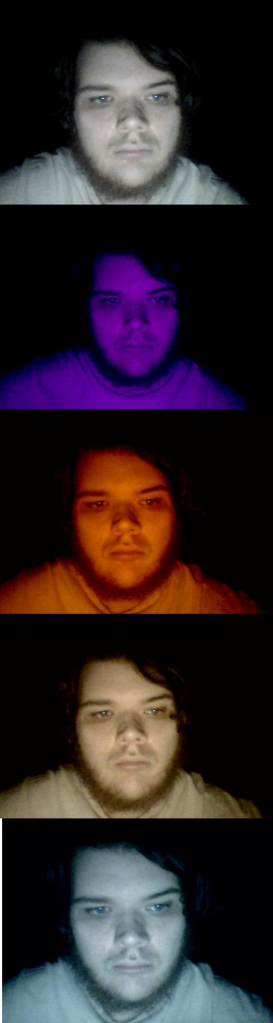 From top to bottom: normal color setting, blacklight, candle, halogen light, mercury vapor light.